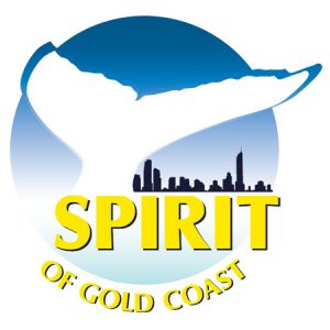 Spirit of Gold Coast Whale Watching - Accommodation Australia