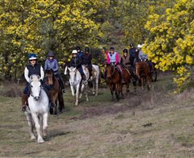 Burnelee Excursions on Horseback - Accommodation Australia