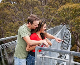 Valley of the Giants Tree Top Walk - Accommodation Australia
